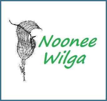 store_nooneewilga